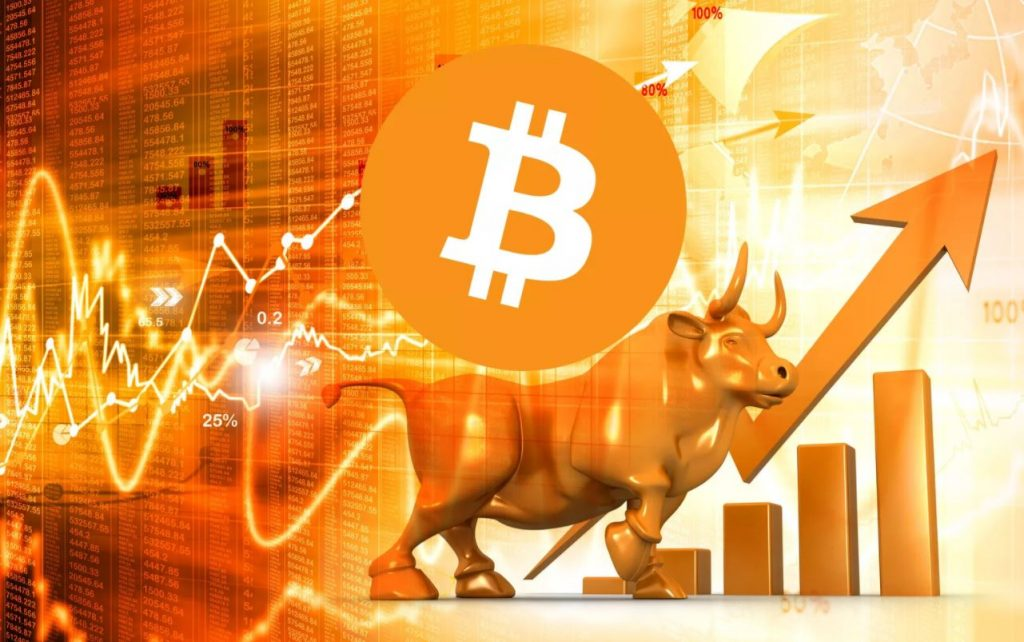what does a bull market in crypto mean
